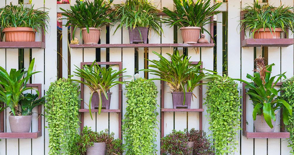 Top 5 Trends For Inspiring Your 2020 Landscape Greenstreet Gardens