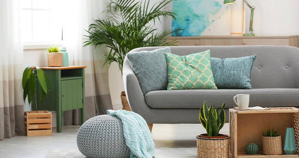 Using Houseplants To Reboot Your Interior Design Greenstreet Gardens