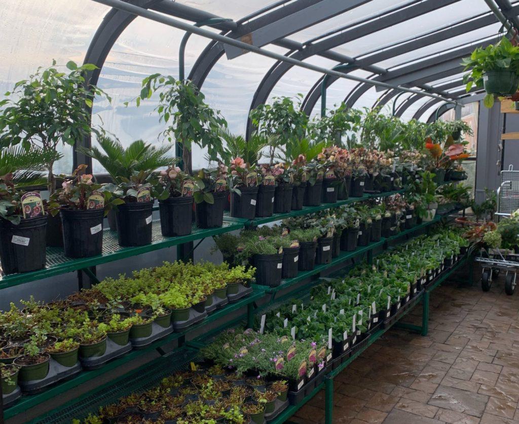 Alexandria Greenhouse