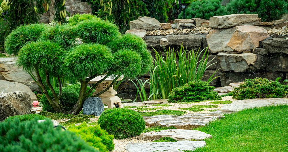 5 Important Things To Know Before You Redesign Your Landscape